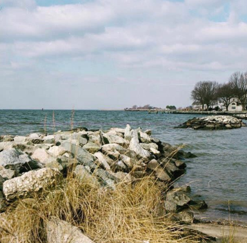 """Exploring coastlines"" • 📷 + words: @misskirr in Maryland"