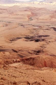 desert_beauty